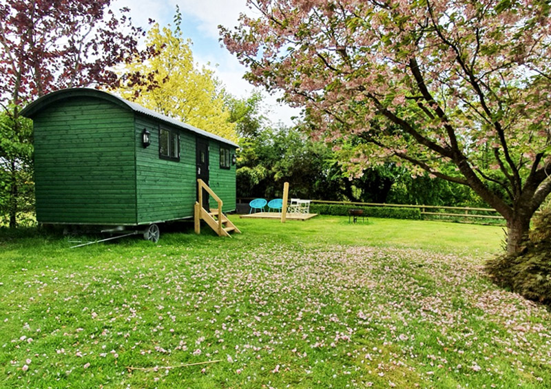 A 6m Shepherds Hut in the Shropshire countryside